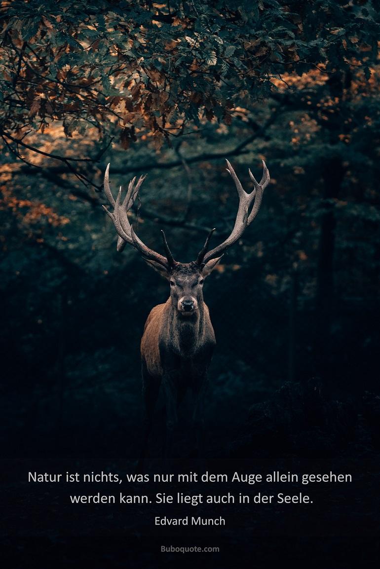 Munch Natur Ist Nichts Was Nur Mit Dem Auge Allein